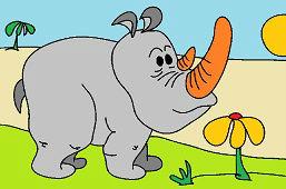 Poco rinoceronte