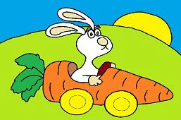 Conejo en el coche