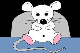 Casa del mouse